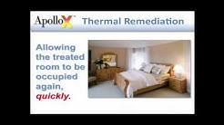 Bed Bug Treatment by ApolloX Pest Control Services, Greenwich CT