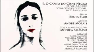 O Canto do Cisne Negro - André Morais & Mônica Salmaso (Bruta Flor)