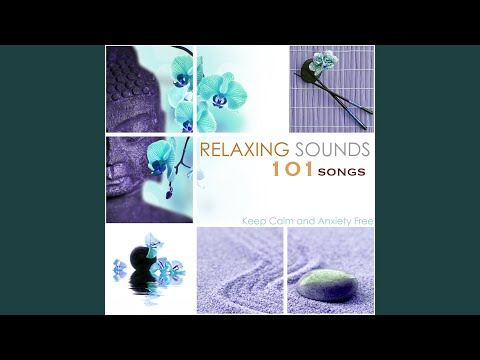 Soothing Dreams (Spa Sounds)