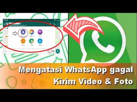 Whatsapp Tidak Bisa Kirim Foto dan Video - Ini Cara Mengatasinya.