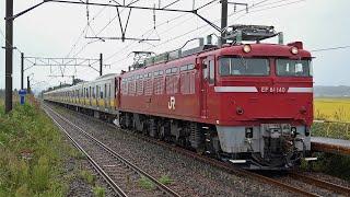 電気機関車EF81(22) ~E231系カナリア色 青森配給~