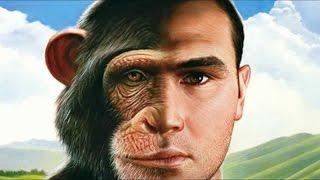 Олег Сунцов - Отличие человека от животного
