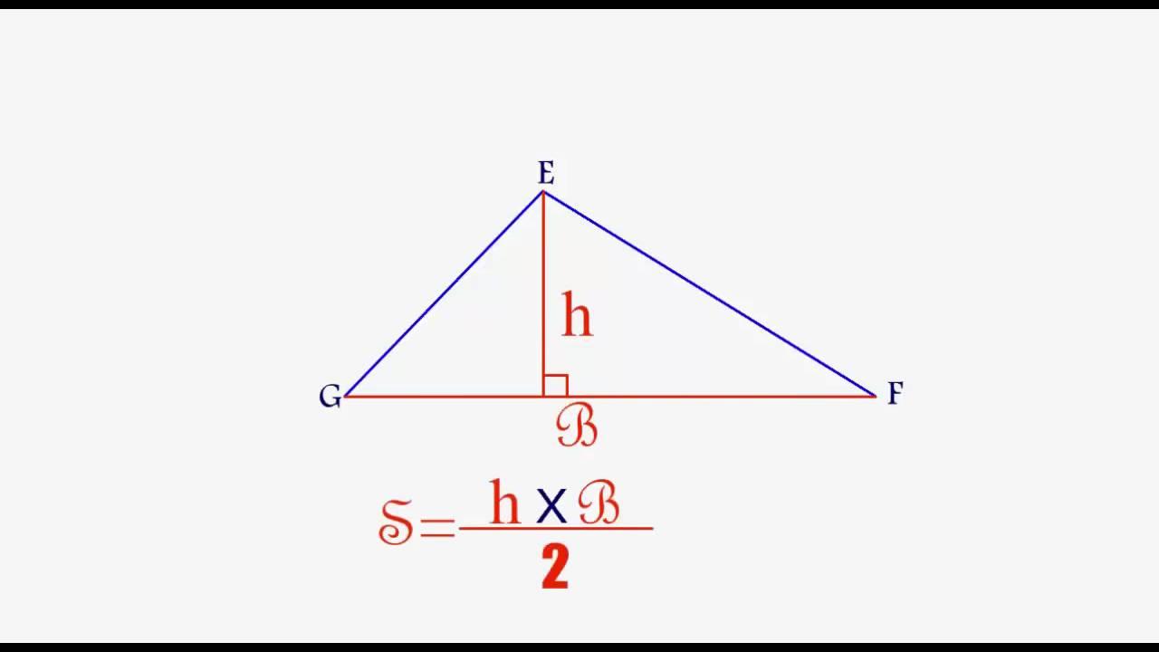 مساحة مثلث على أنواعه المستوى الخامس إبتدائي Youtube