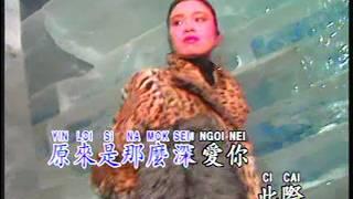 飘雪 Piao Xue (广东) (辉歌 Victory Production - DVD版)