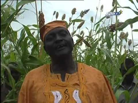 South Sudan - Tonychol Farms in Warrap State (1000 Fadans) مزارع ولاية واراب