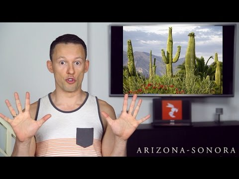 Top 10 Surprising Secrets about Arizona! 🌵