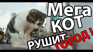 МЕГА КОТ РУШИТ ГОРОД ! ( Tasty planet forever )