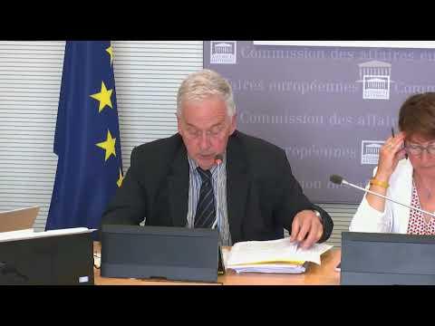 """Commission des AE :""""La réponse sanitaire européenne est-elle à la hauteur des enjeux ? """""""