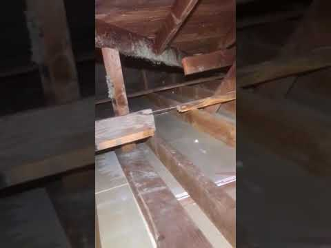 Attic Insulation Clean Out