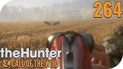 THE HUNTER: CALL OF THE WILD #264 - GÄNSE AM HIMMEL! 🐗 || PantoffelPlays