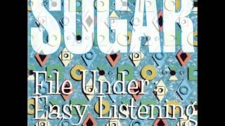 Watch Sugar Company Book video