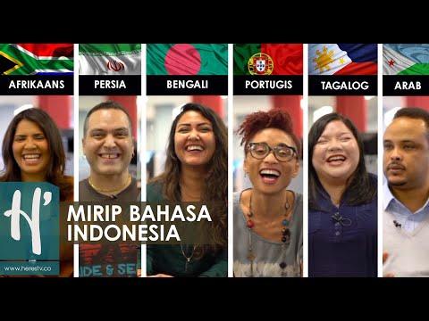 Lambang Negara Indonesia Burung Garuda | Garuda Pancasila | Bendera Nasional Indonesia