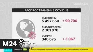 Число случаев коронавируса в мире превысило 5,5 млн человек - Москва 24