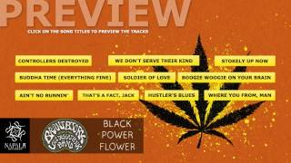 BRANT BJORK and the Low Desert Punk Band - Black Power Flower (Preview) | Napalm Records