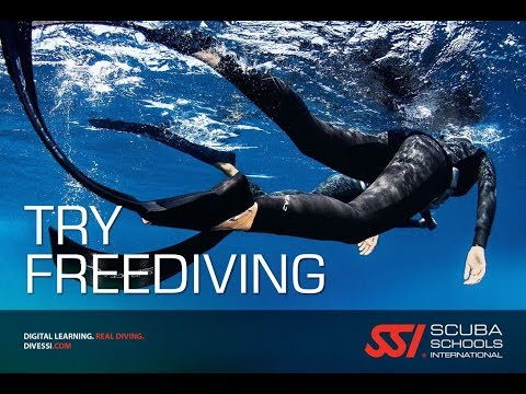 Freediving Basics