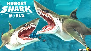 Megalodon Shark  Vs GREAT WHITE SHARK - Hungry Shark World