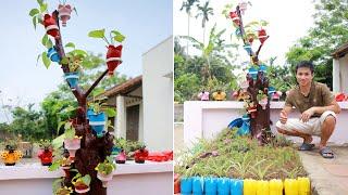 Um Lindo Jardim com Arvore Seca e Garrafas de Plástico