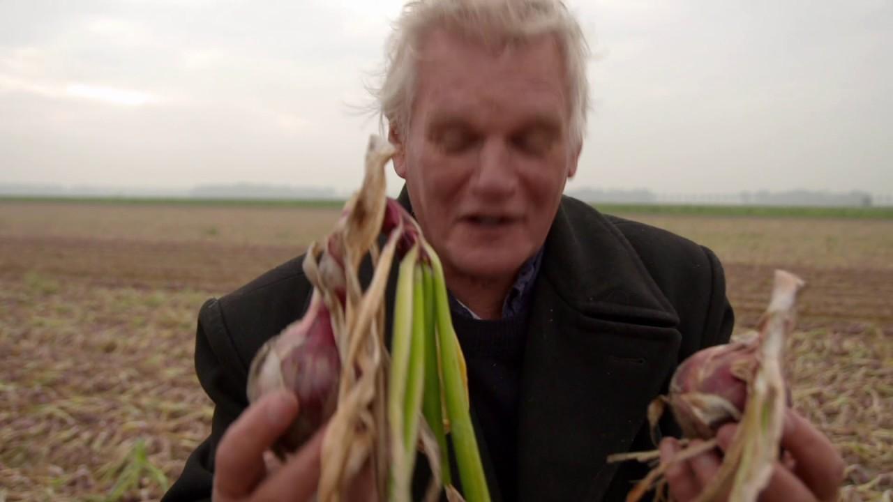 De Wilde Keuken : Holland onions in de wilde keuken youtube