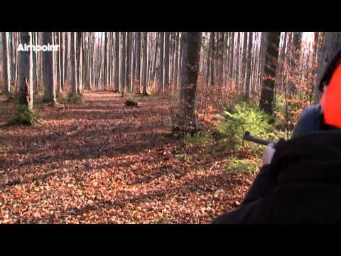 Aimpoint Hunters Video Wild Boar Fever 6 Trailer