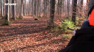 Aimpoint Hunters Video Wild Boar Fever 6 IWA Trailer 2015