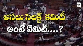 What Is Select Committee ? | How Do Select Committee Work | AP Capital News | ALO TV