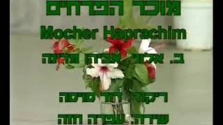 Mocher Ha'Prachim - Dance | מוכר הפרחים - ריקוד