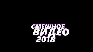 Смешные видео приколы подборка 2018