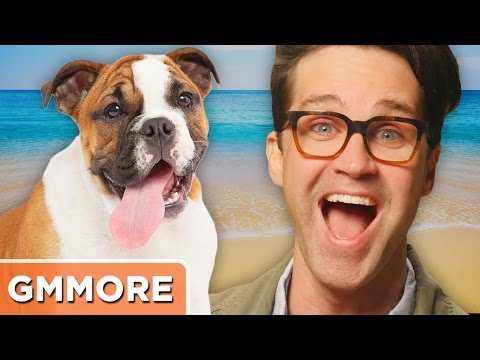 Storytime: Dog Beach With Link