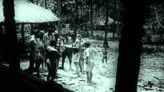 F-917 The men of Timor: Dutch East Indies in World War Two Video