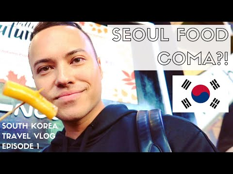KOREAN STREET FOOD, MYEONGDONG + MEERKAT CAFE | SEOUL SOUTH KOREA TRAVEL VLOG 2018 | EPISODE 1