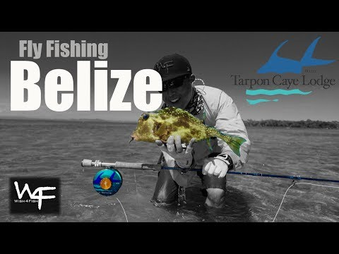 W4F - Fly Fishing Belize