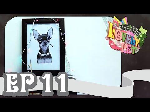 "VRZO - We Are Lovely Pet - ""ทองหยอดมรณะ"" [Ep.11] 18+"