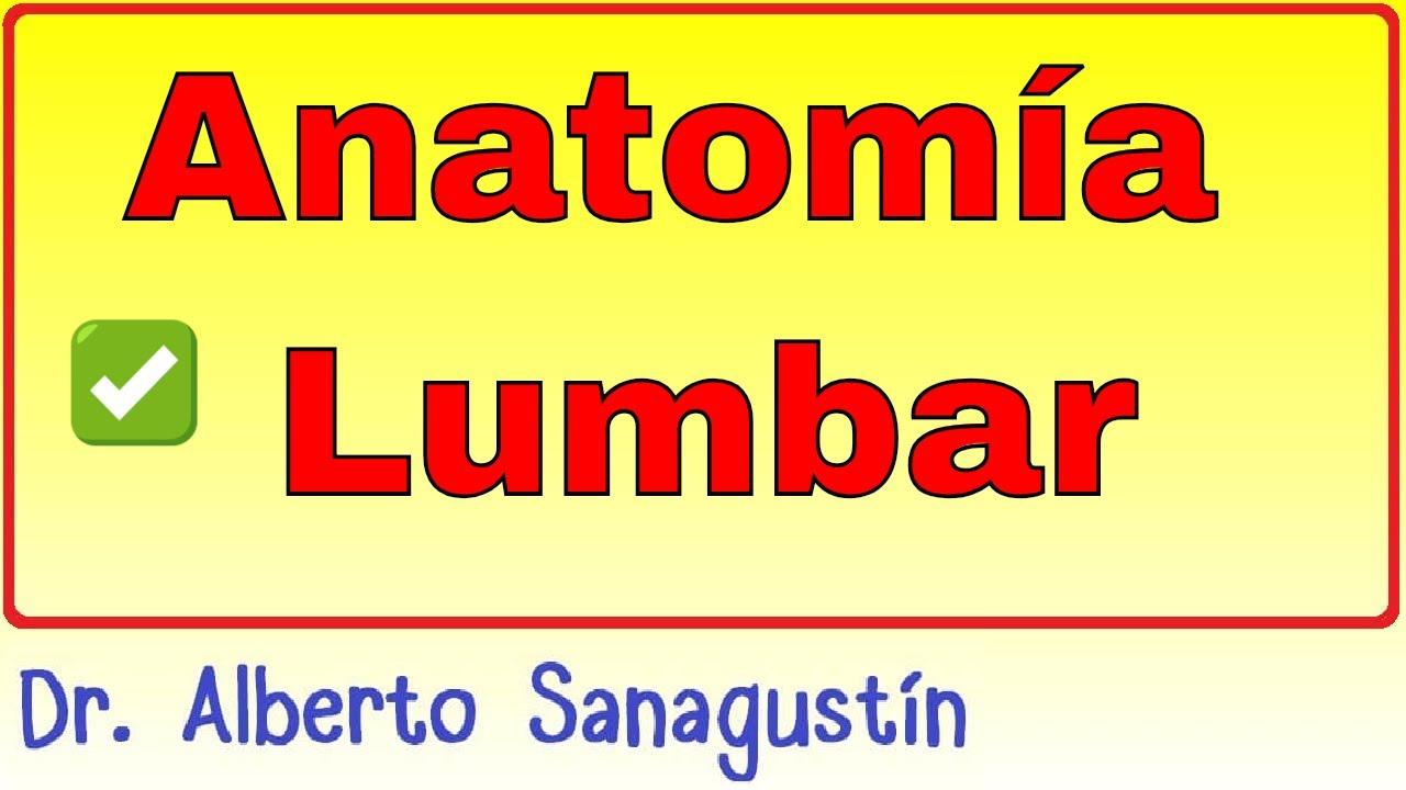 Anatomía Lumbar - YouTube