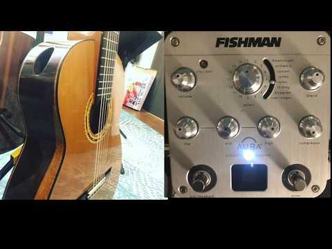 Fishman Aura Nylon Guitar Presets