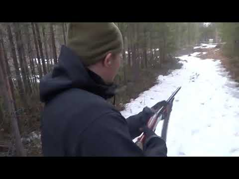 Стрельба пулями на 40 метров ИЖ -18 16/70 !