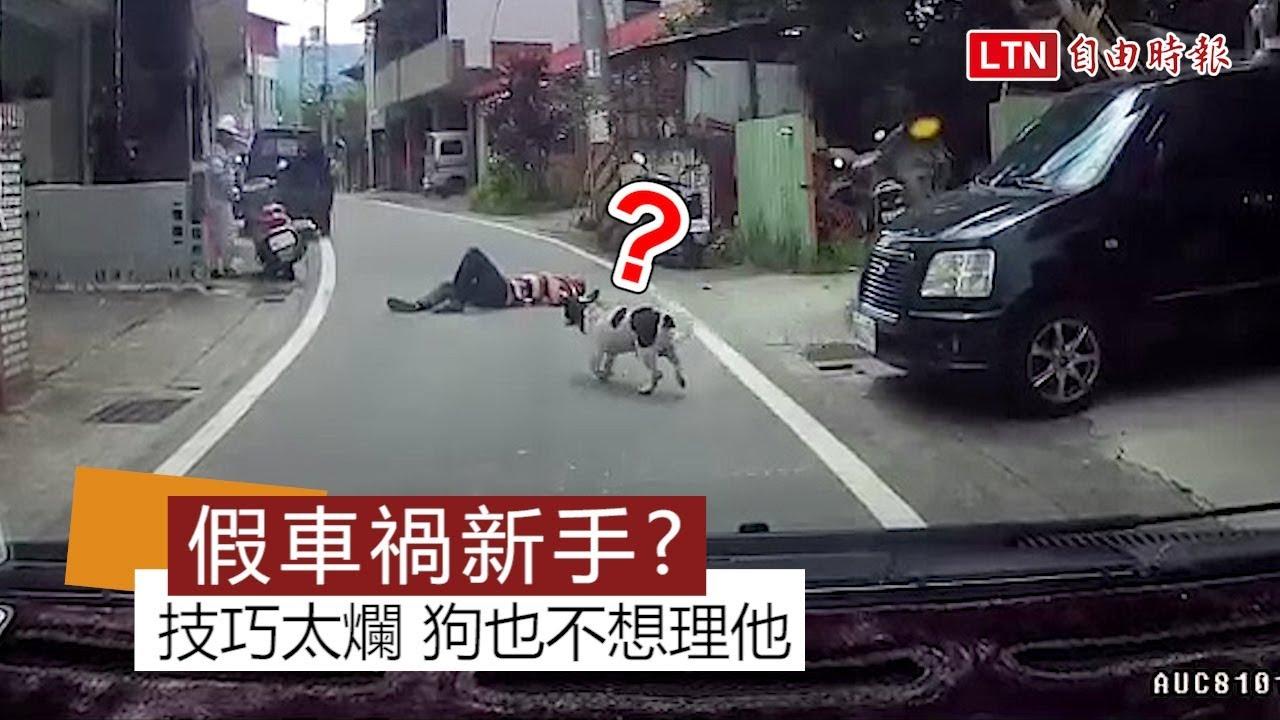 網友埔里遇見「假車禍新手」 技巧太爛狗也不想理他 - YouTube