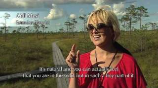 Visit Soomaa National Park in Estonia
