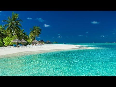 Sanfte Wellen am karibischen Meer: Meeresrauschen zum Entspannen und Meditieren