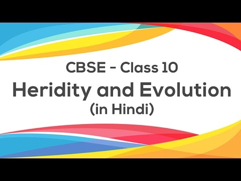 Heredity & Evolution (Hindi) - Class 10 X Science: CBSE