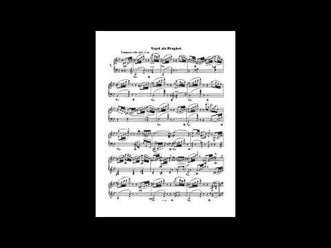 Arcadi Volodos - Schumann, Waldszenen op. 82