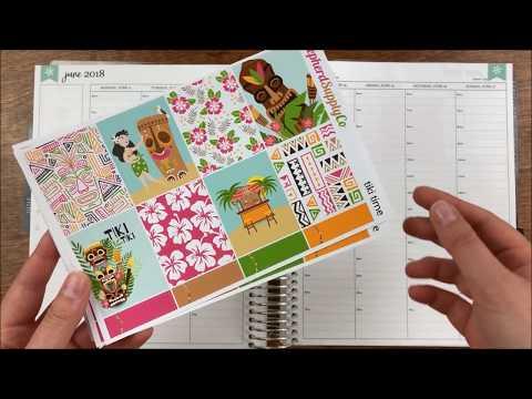 Plan With Me // Erin Condren Hourly // Shepherd Supply Co