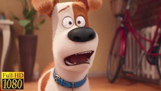 Тайная жизнь домашних животных (2016) - Новый брат Макса (2/10)|Семейные Мультфильмы