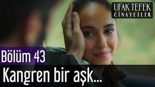 Ufak Tefek Cinayetler 43. Bölüm - Kangren Bir Aşk...