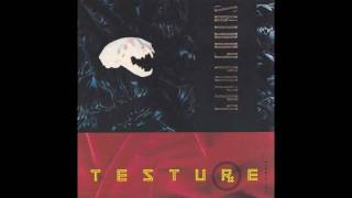 "SKINNY PUPPY - Testure (12"" Mix)"