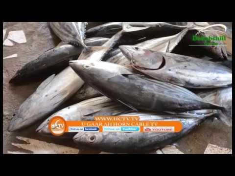 Barnaamijka Muqdisho Iyo Maanta Iyo Qiimaha Kaluunka By HCTV Hargaysa