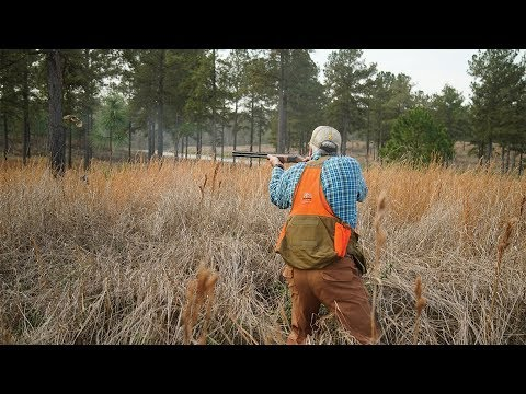 Alabama Quail | The Flush: Season 9, Episode 12