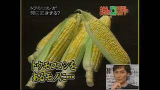 24時間テレビ「まさかのエコミステリー」2005 08 28