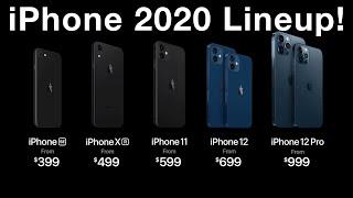 iPhone 12 (2020) Liฑeup Buyers Guide!