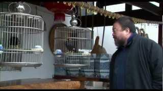 Ai Weiwei: Never Sorry - Tráiler español