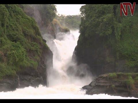 Safari in Uganda: The beauty that Murchison falls national park holds (Part 3)